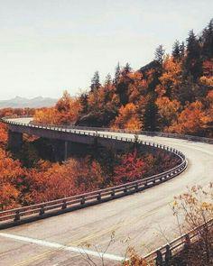 Fallen - Season Autumn and Fall / Jahreszeit Herbst - Natur Blue Ridge Parkway, Photo Bretagne, Autumn Aesthetic, Destination Voyage, Fall Wallpaper, Trendy Wallpaper, Halloween Wallpaper, Autumn Photography, Photography Poses