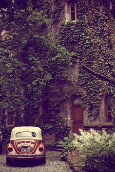 Gnostic forest via hipster details vw beetles, vw bugs, vintage cars, dream homes, vine, old houses, old cars, place, volkswagen