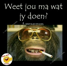 Weet jou Ma Unusual Facts, Fascinating Facts, Afrikaanse Quotes, Funny Qoutes, Best Funny Pictures, Fun Facts, Sunglasses Women, Weird, Social Media