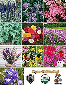 David's Garden Seeds Hummingbird Attractant Set contains 10 packs of seeds that hummingbirds love. Attracting Hummingbirds, How To Attract Hummingbirds, Garden Seeds, Spring Garden, Vegetable Garden, Happy Holidays, Holiday Gifts, Gardening, Plants