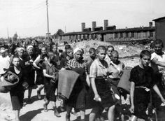 Women to be used as slave labor walk to the women's barracks at Birkenau.  Officially, their heads were shaved in order to prevent the spread of lice.  However, the hair was packed into bundles and shipped back to Germany for use by the Reich.  Wigs of human hair shorn from Jews who worked or were murdered at Auschwitz/Birkenau are still extant.