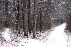 Winter, Snow, Outdoor, Outdoors, Outdoor Games, Outdoor Life, Human Eye