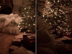 sleeping under the tree