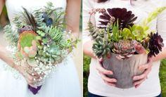 Plantable succulent wedding bouquet (eco-friendly bride post)