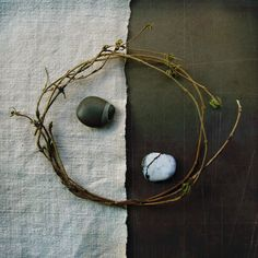♂ Still life Yingyang Balance