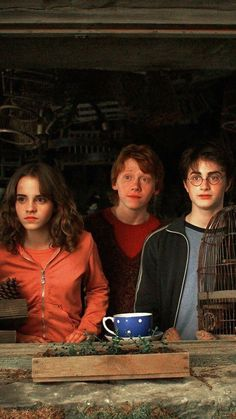 """The golden trio """"Harry Potter and the Prisoner of Azkaban"""" Harry Potter Ron Weasley, Harry Potter Tumblr, Harry James Potter, Harry Hermione Ron, Ron And Harry, Mundo Harry Potter, Harry Potter Pictures, Harry Potter Facts, Harry Potter Characters"""