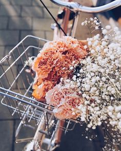 aesthetic eyecandy, floral, greenery, succulents flowers vintage Debbie Bong (formerly Lumiere & Co) - create your magic & live your dreams Spring Aesthetic, Flower Aesthetic, Aesthetic Plants, Bloom, My Flower, Beautiful Flowers, Flower Basket, No Rain, Planting Flowers