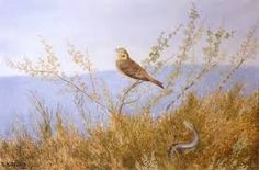 Ormen Risler Under Lying Greeting Card for Sale by Kittelsen Theodor Severin Most Popular Artists, Great Artists, Snake In The Grass, Oil Painting Gallery, Professional Painters, Nature Paintings, Bird Paintings, Art Database, Oil Painting Reproductions