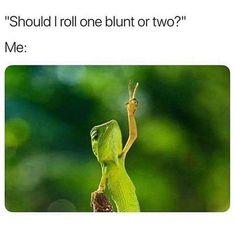 Weed Jokes, Weed Humor, Cannabis, Medical Marijuana, Marijuana Funny, Ganja, Funny As Hell, The Funny, Bob Marley