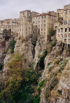 Constantine, Algeria  Like being able to see the roots of your teeth that go to the depth of your soul