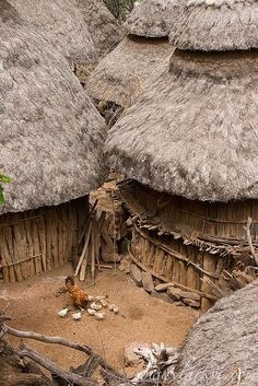 Africa | A typical scene in Konso Village, in Southern Ethiopia. | © Sean Winslow