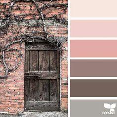 Pink + brown palette