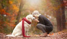 Billedresultat for photoshoot with dog