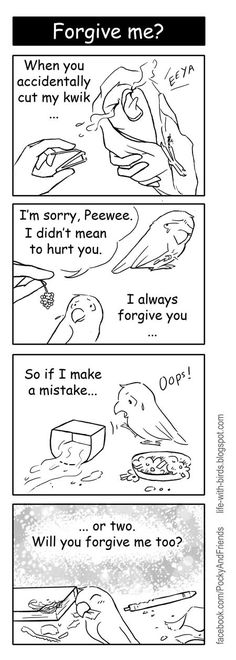 From: http://life-with-birds.blogspot.com/
