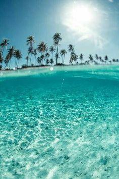 Ocean Everything Green Amp Blue Beach Summer Beach Summer Vibes Sunny Beach, Summer Beach, Ocean Beach, Blue Beach, Palm Beach, Summer Vibes, Summer Days, Summer Feeling, Summer Fun