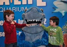 Shark attack :)