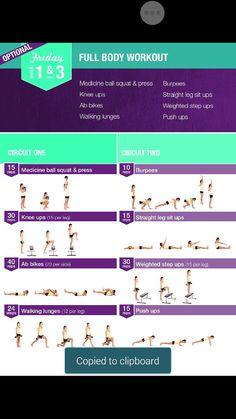 Wks 1&3 full body work out