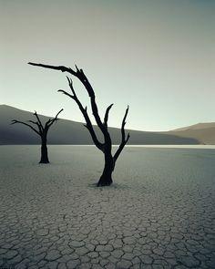 Джимми Нельсон - Маэстро в мире фотографии - ФотоГалерея