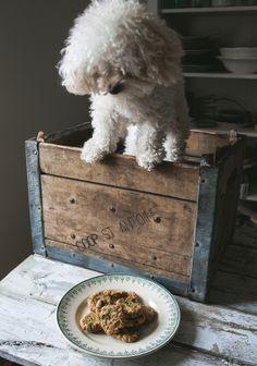Biscuits pour chien - Recette | Trois fois par jour