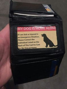 What a great idea! Make sure your pet(s) will be taken care of, in case of an emergency.