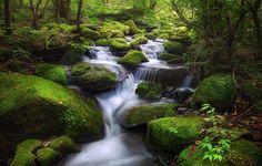 Moss Valley - Moss Valley waterfall