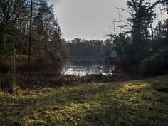 See im Wittringer Wald