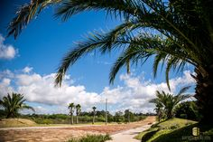 Venha Viver Aqui. Alto das Figueiras  Lajeado - RS - Brasil