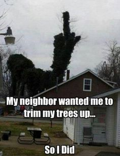 My neighbor wanted me to trim my trees up!!! YES !! Mine needs to stop blowing their leaves into everyone else 's yards and the street!! Creeps