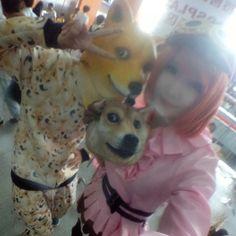 #doge #cosplay #cosplayer #anime #animecosplay #kawaii