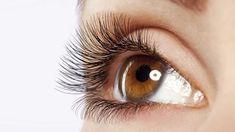 InfoNavWeb                       Informação, Notícias,Videos, Diversão, Games e Tecnologia.  : 10 alimentos que evitam herpes da varicela nos olh...