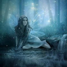 Fairy, I love it.