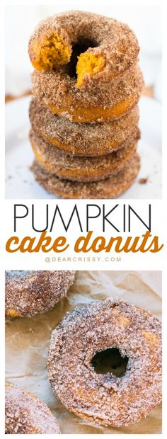 fig dessert recipes, cake dessert recipes, canned pumpkin dessert recipes - Pumpkin Cake Donuts - A simple recipe that produces a moist, sweet and delicious donut. Add the cinnamon sugar and they are to die for! Pumpkin Cake Donut Recipe, Pumpkin Dessert, Pumkin Donuts, Cake Donut Recipes, Cake Donut Recipe Baked, Pumpkin Cakes, Pumpkin Cake Recipes, Fig Dessert, Sugar Pumpkin