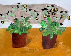 Two primulas from Richard's shop - Elaine Pamphilon
