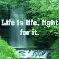 Life is life, fight for it....