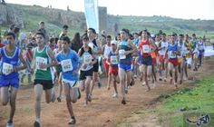 أكثر من 500 تلميذ وتلميذة يشاركون في…: شارك حوالي 520 تلميذًا وتلميذة ينتمون لمختلف المؤسسات التعليمية في إقليم إفران في فعاليات البطولة…