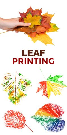 Fun & creative ways for kids to paint with leaves. Fall leaf crafts for preschool and elementary. Turn fallen leaves into beautiful works of art with this autumn craft for kids ! We began by going on a hike to collect fallen leaves. Then, we set ou… Leaf Projects, Fall Art Projects, Autumn Leaves Craft, Autumn Art, Toddler Crafts, Preschool Crafts, Painting For Kids, Art For Kids, Fall Arts And Crafts