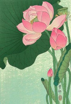 'Lotus Flower - Japanese Block Print' Art Print by fineearth Flowering lotus flowers, Ohara Koson, 1920 1930 / Japanese Woodcut Millions of unique designs by independent artists. Find your thing. Art Lotus, Lotus Kunst, Art And Illustration, Ohara Koson, Japanese Lotus, Japanese Flowers, Japanese Peony Tattoo, Japanese Water, Art Floral