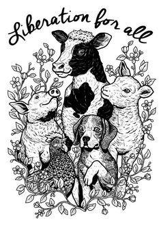 dog Illustration art My art artwork shirt vegan pig cow beagle lamb hen animalrights CAF veganveins The Animals, Vegan Animals, Animals Planet, Strange Animals, Art And Illustration, Vegan Tattoo, Vegan Quotes, Vegetarian Quotes, Vegan Blogs