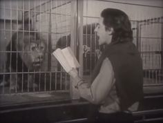 Michael McClure reading poetry to lions