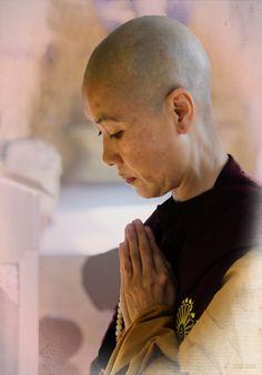 Buddhist Nun in Burma