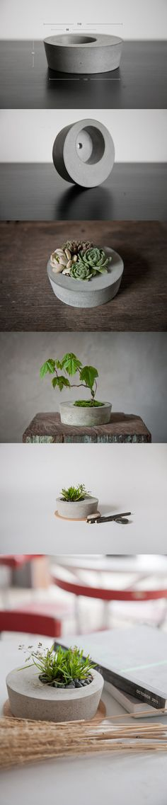 Small concrete planter - like the quirkiness if it being uncentred.