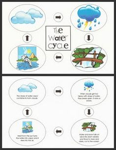 Water Cycle - unit & puzzle