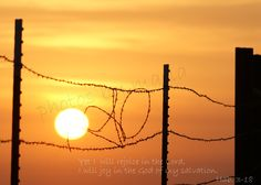 barbed wire sunrise