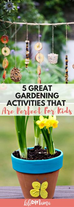 Spring has sprung! Great gardening activities for kids now that the weather is getting warmer. #gardening #gardeningactivities #spring #springactivities #fairygarden #herbs #teachingkids