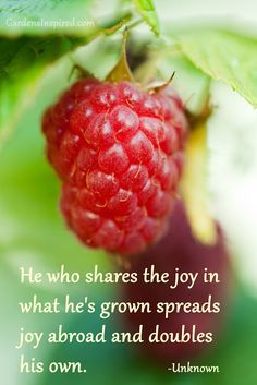 """He who shares the joy in what he's grown spreads joy abroad and doubles his own."" Click on the photo to find more garden quotes."