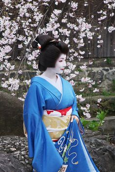 miyagawacyo toshimana Japanese Geisha, Japanese Kimono, Japanese Costume, Nihon, Traditional Dresses, Kyoto, Pop Culture, Beautiful People, Poses