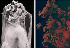Floral Portraits 5 Surreal Floral Portraits by Sayaka Maruyama