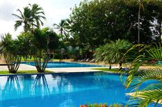 Exotic Pool | Pestana Sao Luis Resort | Amazing Pools