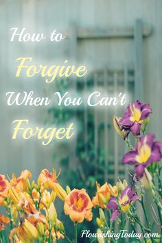 Forgiving others is not always easy. Forgetting the hurt is even harder. So how do we forgive when we can't forget?