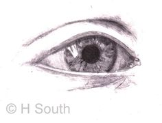 Learn how to draw a beautiful eye step by step with this easy eye drawing demonstration.: Eye Drawing - Smoothing the Shading